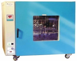 DHG电热鼓风恒温干燥箱